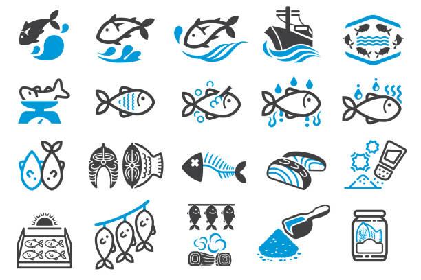 ilustrações de stock, clip art, desenhos animados e ícones de fish processing and fish seasoning for food preservation. - aquacultura