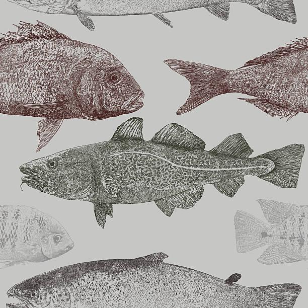 ilustrações de stock, clip art, desenhos animados e ícones de peixe repita padrão - aquacultura