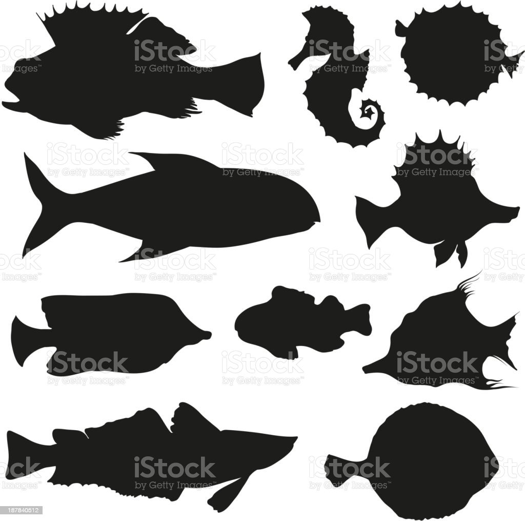 Fish set royalty-free stock vector art