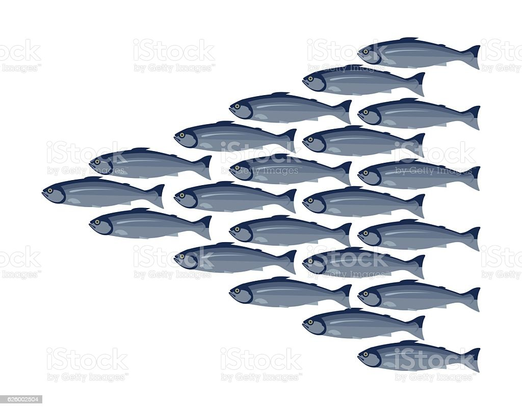 Fish shoal vector art illustration