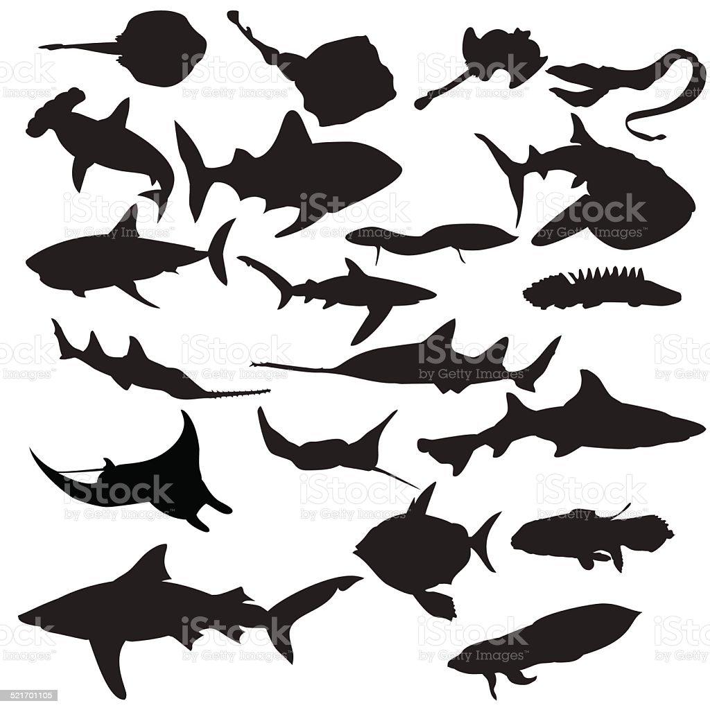 Fish silhouettes vector art illustration