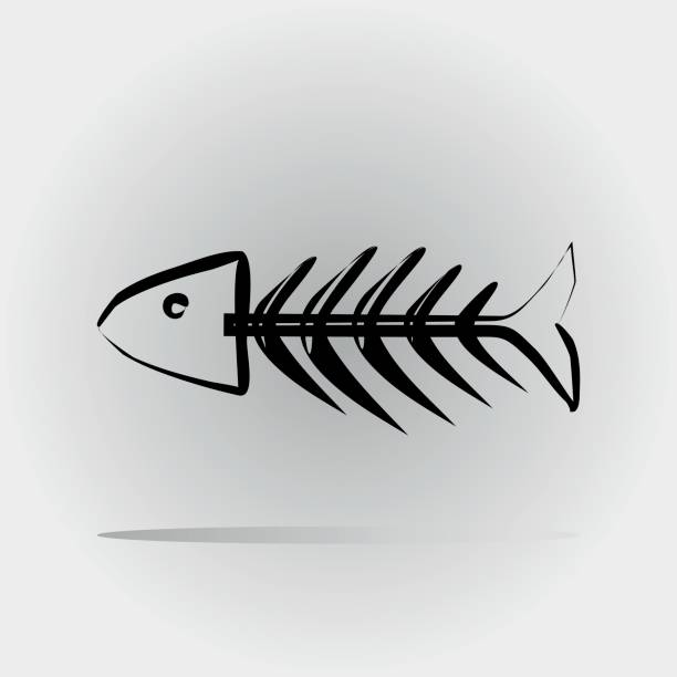 fish skeleton painted with a brush. abstract image. isolated. - fish skeleton stock illustrations, clip art, cartoons, & icons