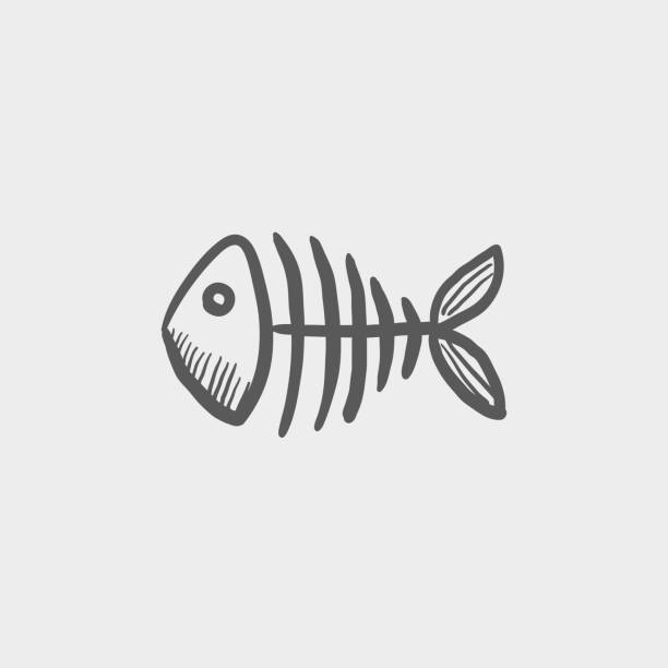 fish skeleton sketch hand drawn doodle icon - fish skeleton stock illustrations, clip art, cartoons, & icons