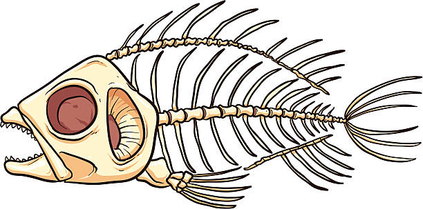 Best Dead Fish Illustrations, Royalty-Free Vector Graphics ...