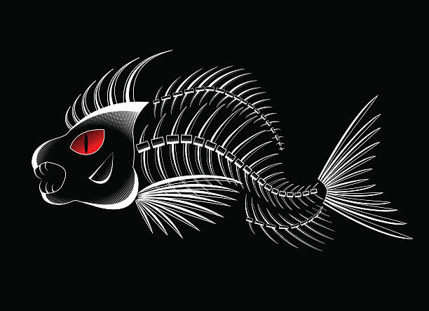 fish skeleton Bones of a skeleton of fish in a vector deathly stock illustrations
