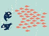 Fish teamwork