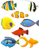 Fish Tropical Fishes Shoal