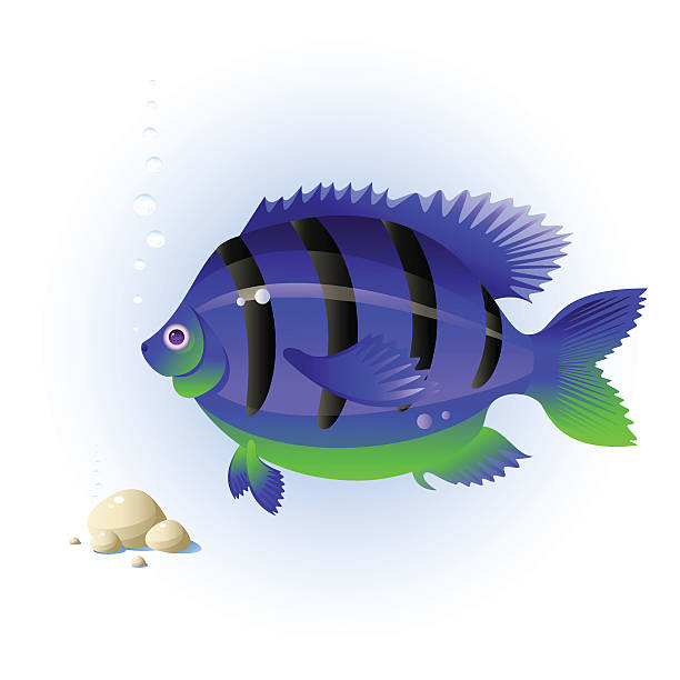 Fish Fish, stones, bubbles, isolated on white, vector blue silhouettes stock illustrations