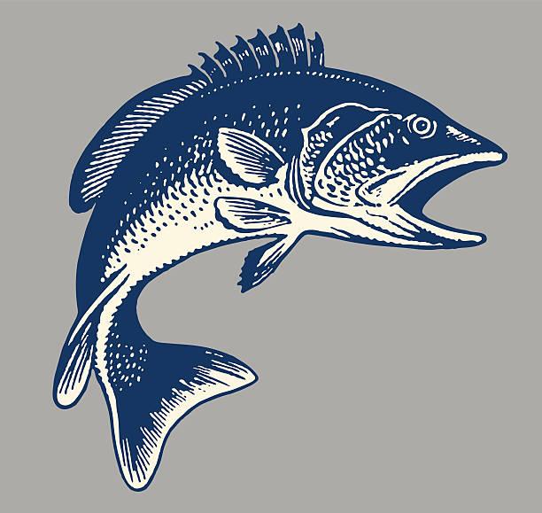 fish - rybactwo stock illustrations