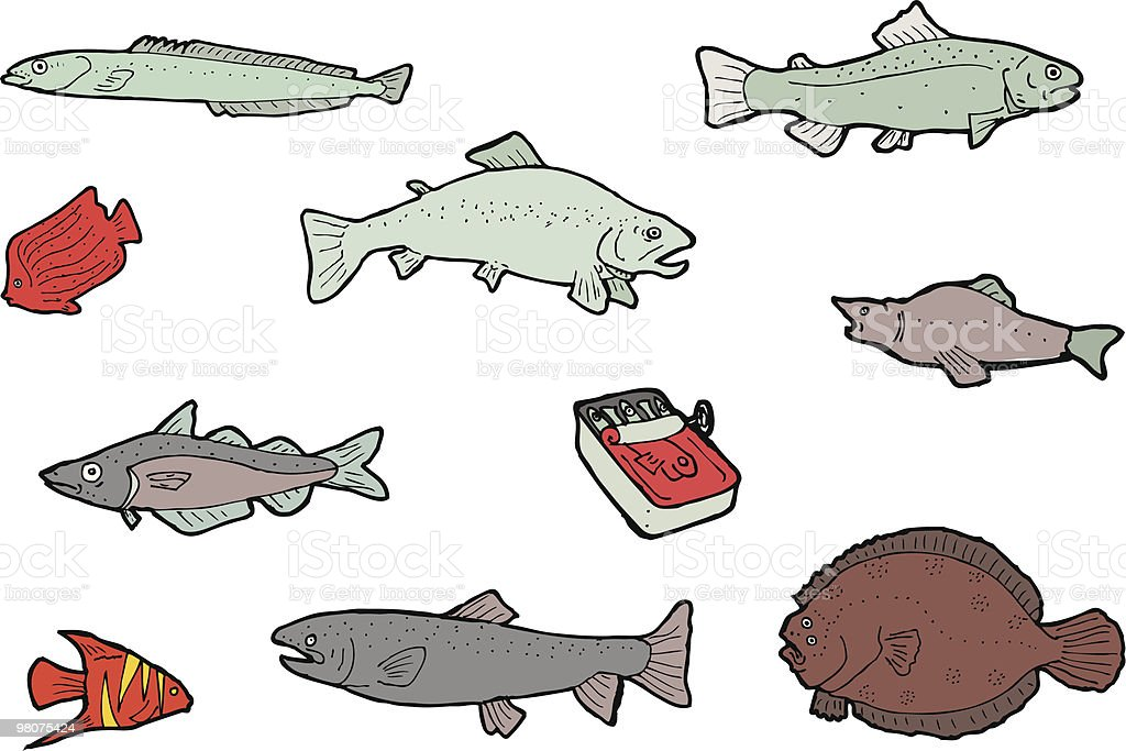 fish royalty-free fish stock vector art & more images of anchovy