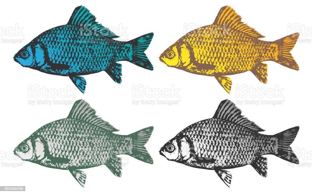 fish vector vector art illustration