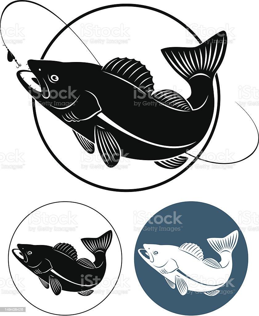 fish walleye vector art illustration