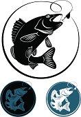 fish walleye