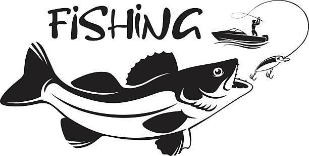 Download 1 927 Walleye Illustrations Clip Art Istock