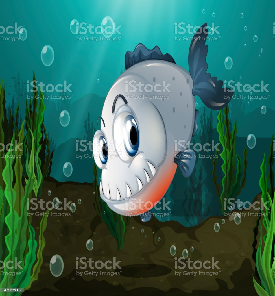 fish with big fangs under the sea vector art illustration