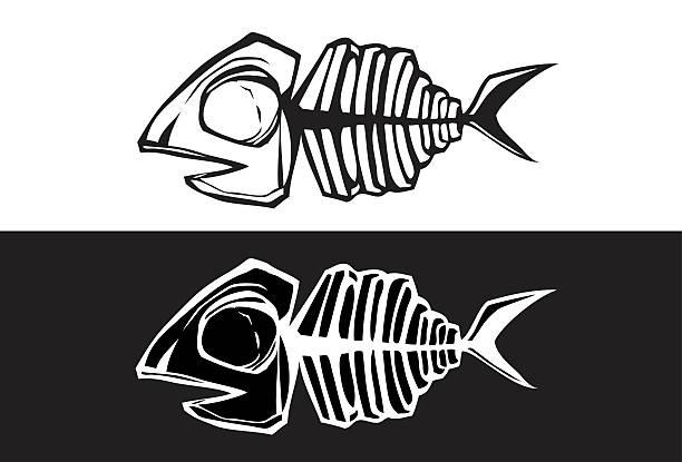 fishbone - animal bone stock illustrations