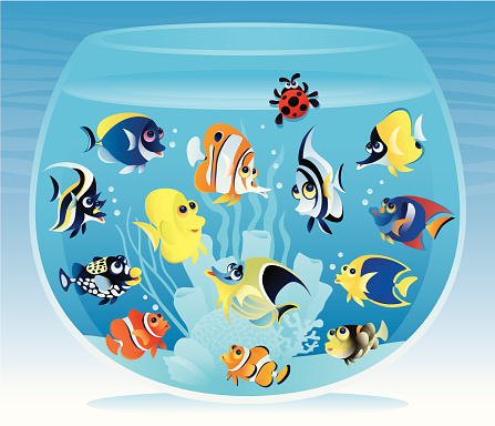 Fishbowl with fish