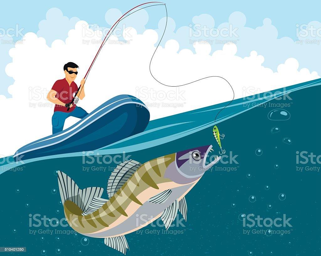 Fisherman catches zander vector art illustration