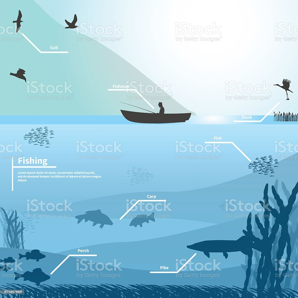 Fisherman on the boat fishes on the lake vector art illustration