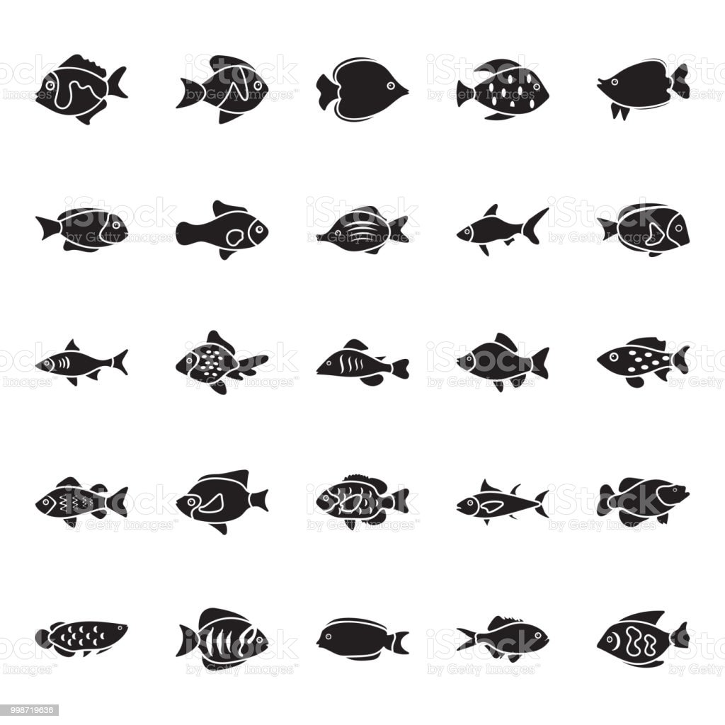 Fishes Glyph Vector Icons vector art illustration