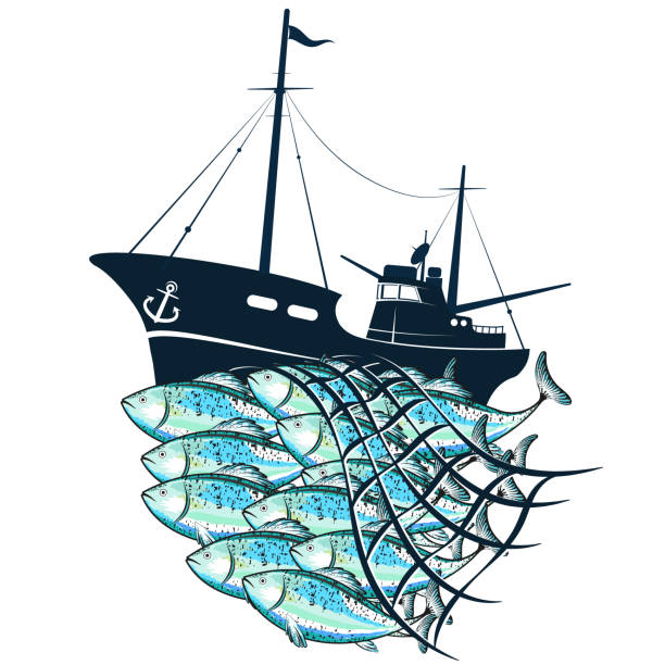 Fishing boat and fish in the fishnet Fishing boat and flock fish in the fishnet seine river stock illustrations