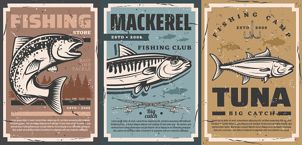 Fishing camp, fisher equipment lures store posters