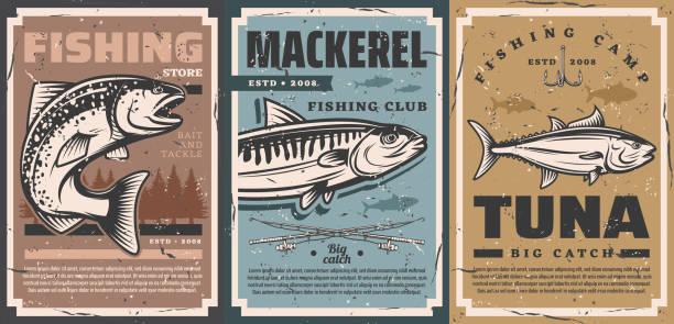 obóz rybacki, sprzęt rybacki przynęty plakaty sklepu - rybactwo stock illustrations