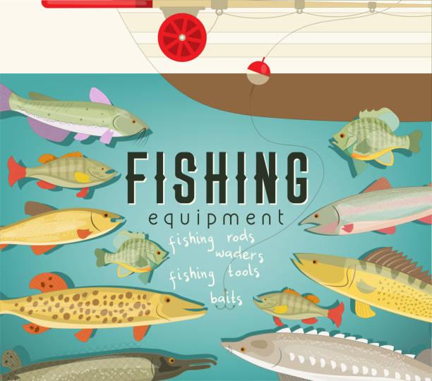 Fishing equipment vector art illustration