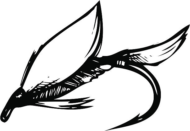 Best Fly Fishing Illustrations, Royalty-Free Vector ...