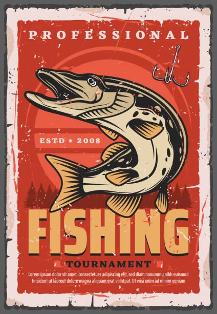 haczyk wędkarski, ryba szczupaka i sprzęt wędkarski - rybactwo stock illustrations