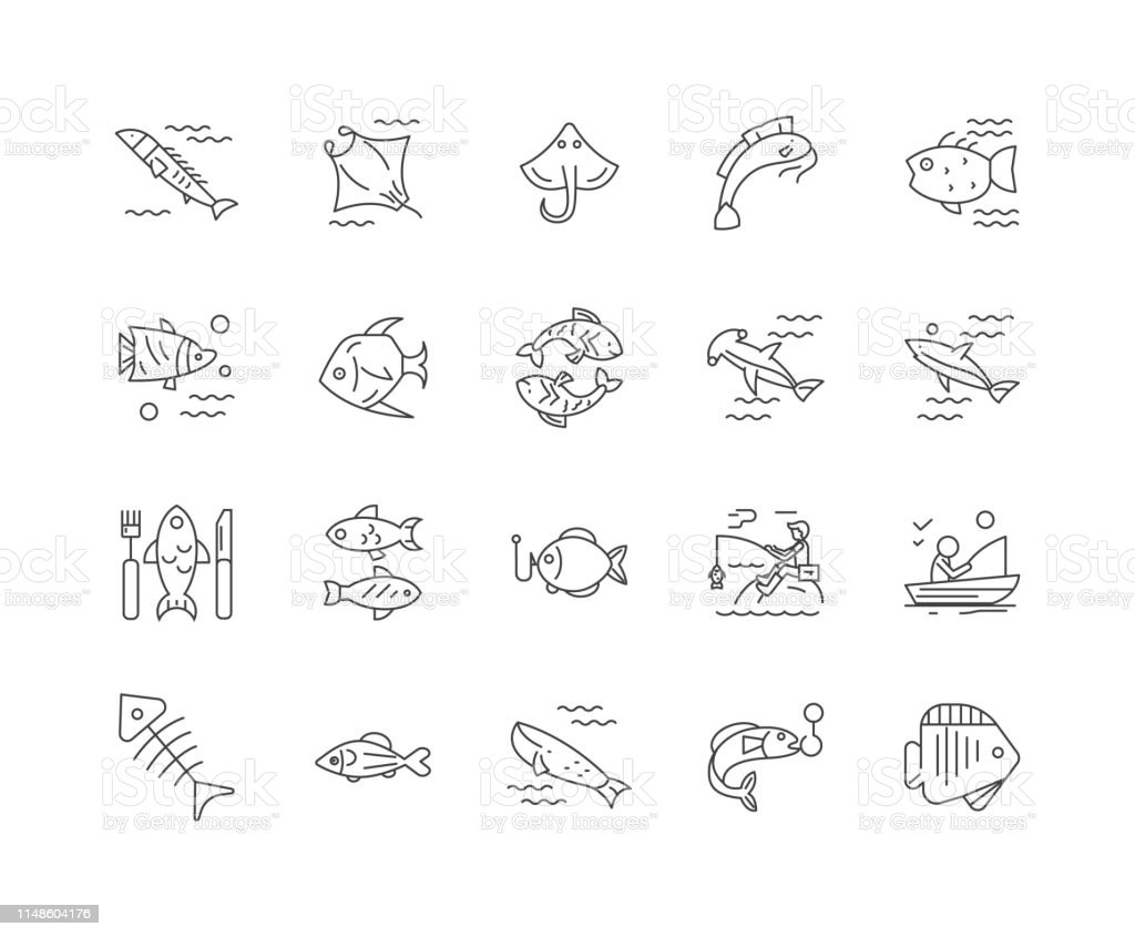 Fishing Line Icons Signs Vector Set Outline Illustration Concept