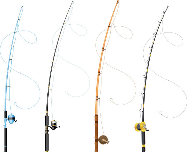fishing poles vector art illustration
