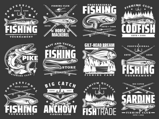 ilustrações de stock, clip art, desenhos animados e ícones de fishing sport, tournament and big fish catch icons - fishman