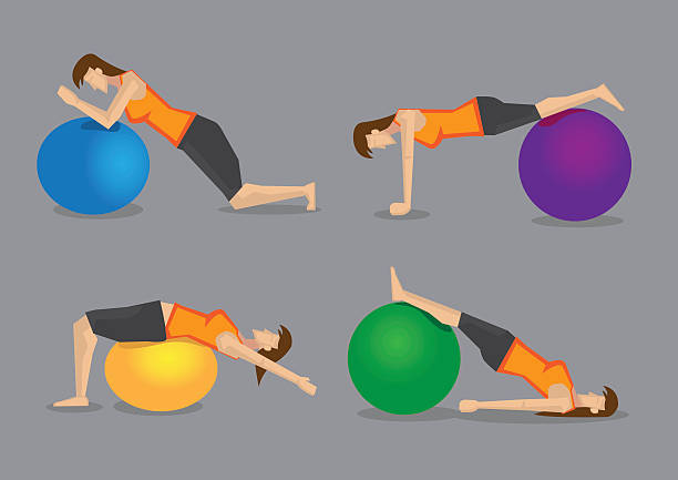 Best Exercise Ball Illustrations, Royalty-Free Vector
