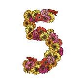 Vijf cijfers gemaakt van veelkleurige madeliefjes bloemen. Floral element van kleurrijke alfabet gemaakt van bloemen.  illustratie