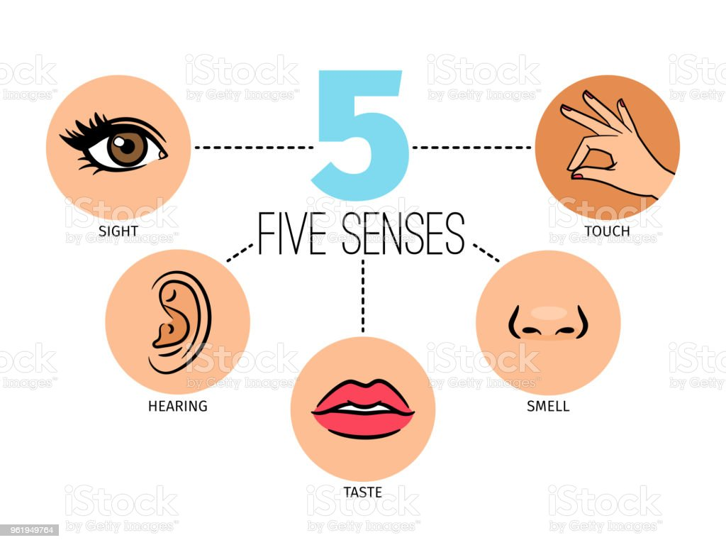 Five Human Feelings Mouth Or Lips Hand And Nose Eye And Ear Icons ...