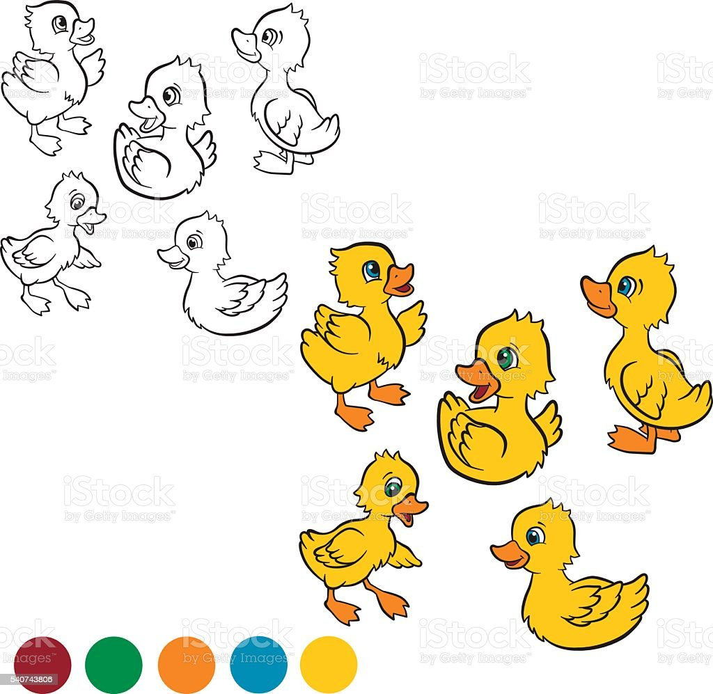 Five little cute ducklings swim and stand. vector art illustration
