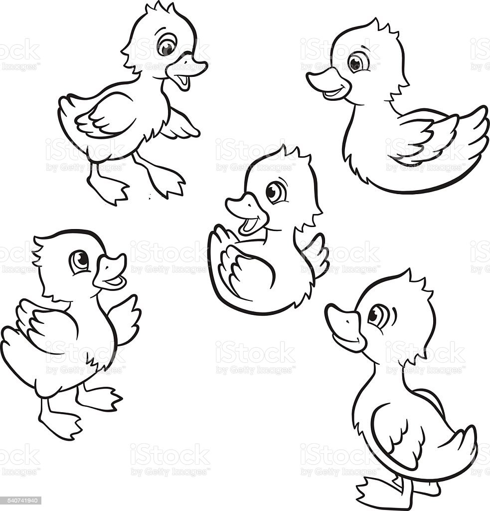 Five little cute ducklings stock vector art more images for Duckling coloring page