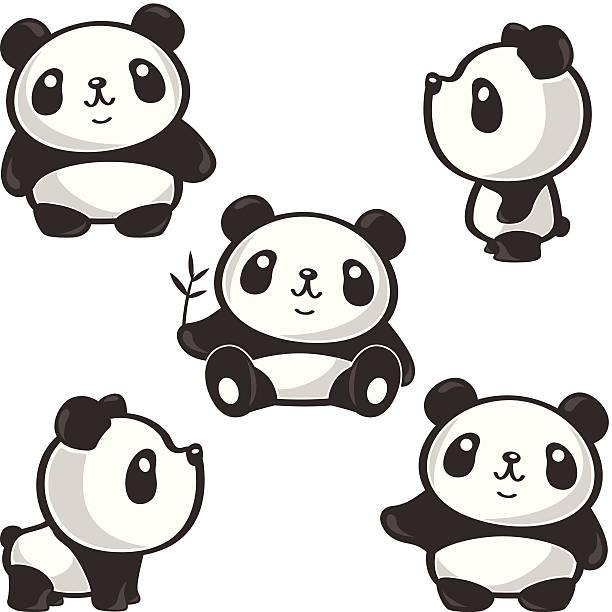 illustrations, cliparts, dessins animés et icônes de cinq poses de panda - panda