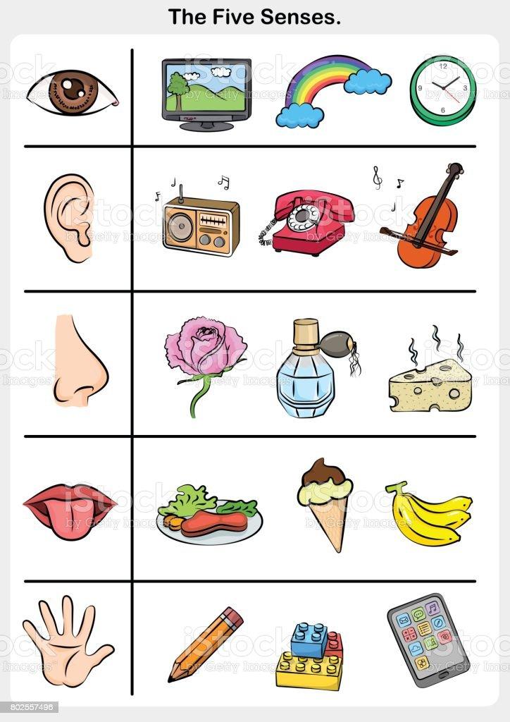 vijf zintuigen hand lippen oog oor neus object van de 5 zintuigen