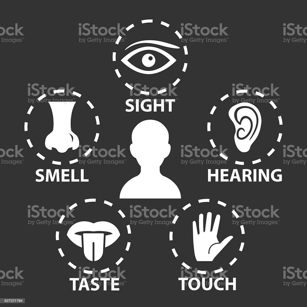 Five senses icon set. Vector illustration.Human organs vector art illustration
