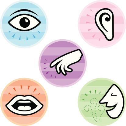 Five Senses Icons