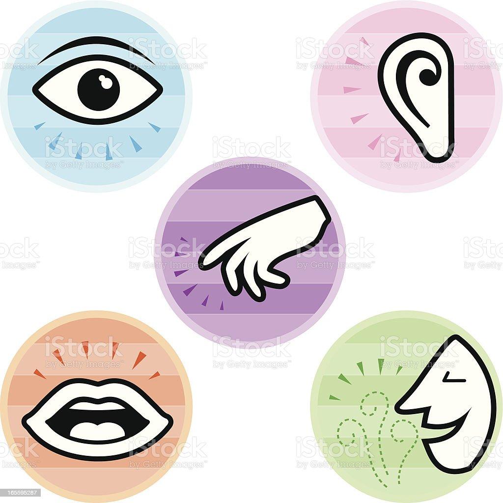 Five Senses Icons vector art illustration