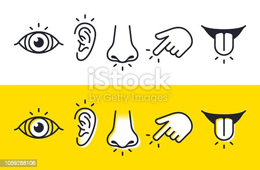 istock Five Senses Sight Hearing Smell Touch Taste Icons and Symbols 1059288106