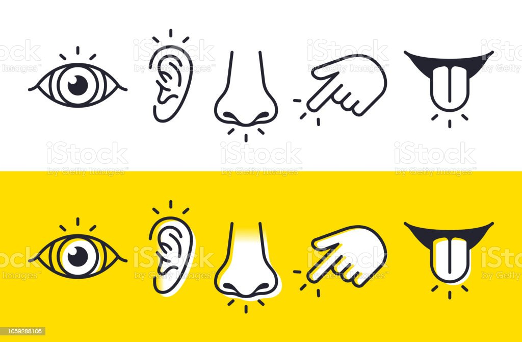Five Senses Sight Hearing Smell Touch Taste Icons and Symbols vector art illustration