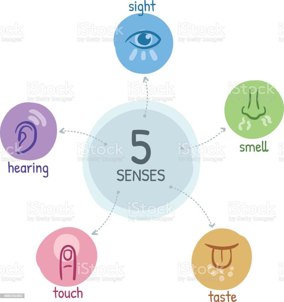 Fünf Sinne mit Symbolen in einer Mind Map-design – Vektorgrafik