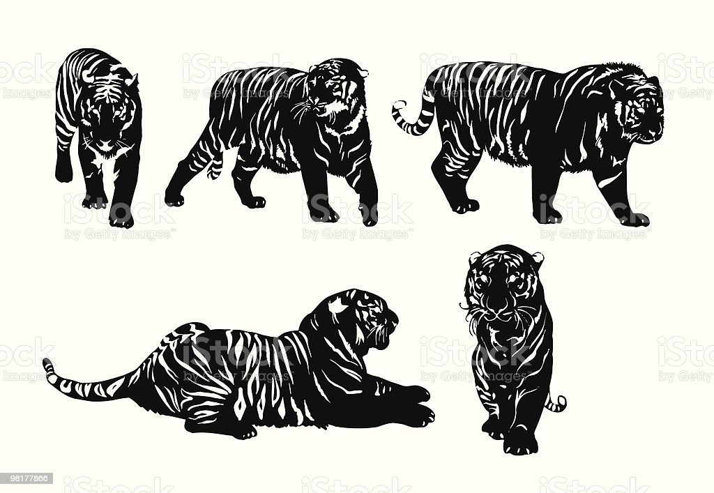 Five silhouettes of tigers royalty-free five silhouettes of tigers stock vector art & more images of aggression