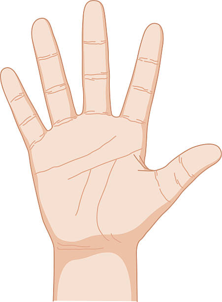 pięć - dłoń stock illustrations