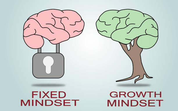 Fixed Mindset vs Growth Mindset.Vector Fixed Mindset vs Growth Mindset.Vector attitude stock illustrations