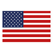 USA flag isolated icon